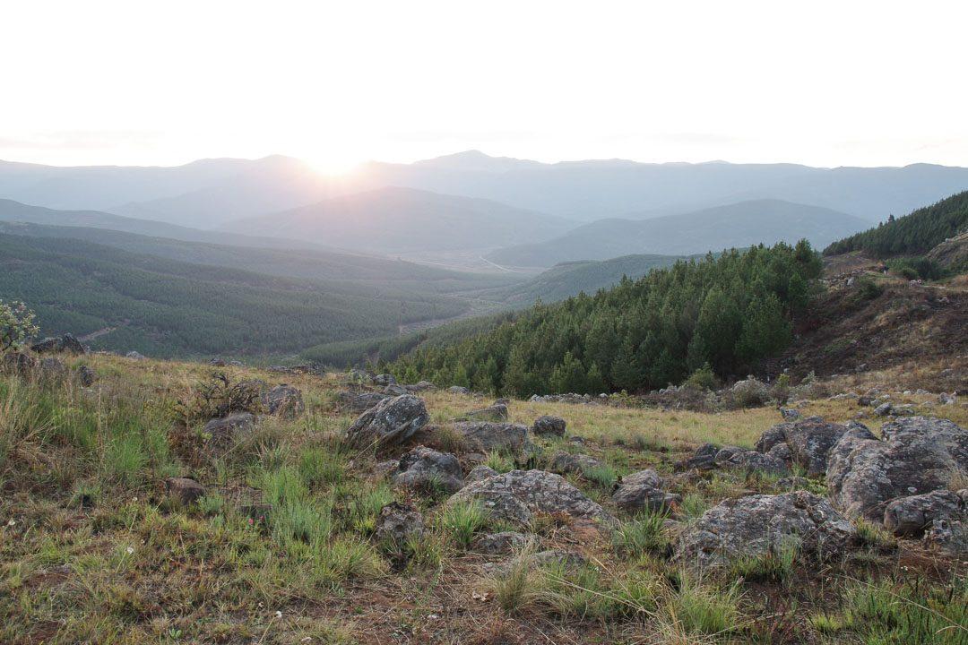 Paysage de colline et foret autour de Graskop