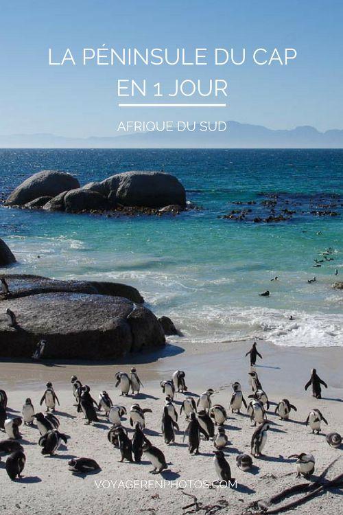 Proposition d'itinéraire pour découvrir les sites incontournables de la Péninsule du Cap en une journée - Afrique du Sud