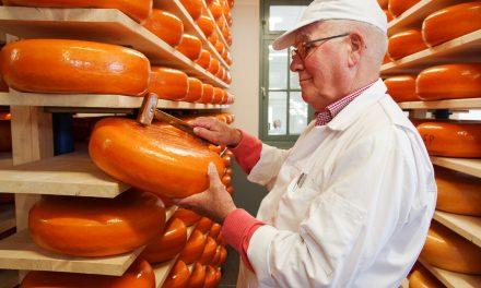 A la découverte des fromages fermiers de Gouda