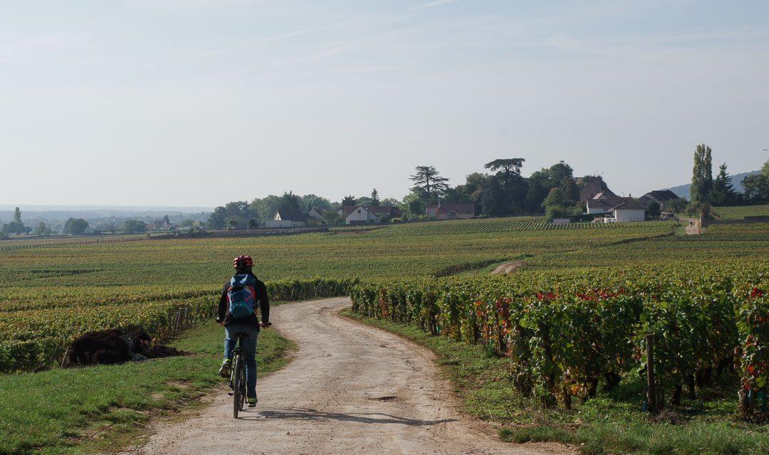 Balade à vélo dans les vignobles de la Côte de Nuits