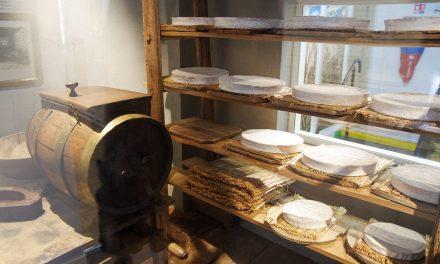 Visite de la Maison du Brie de Meaux