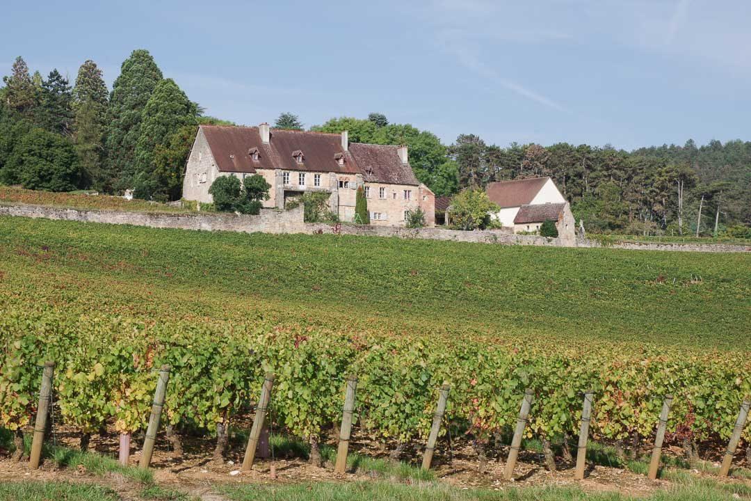 Domaine viticole de Bourgogne