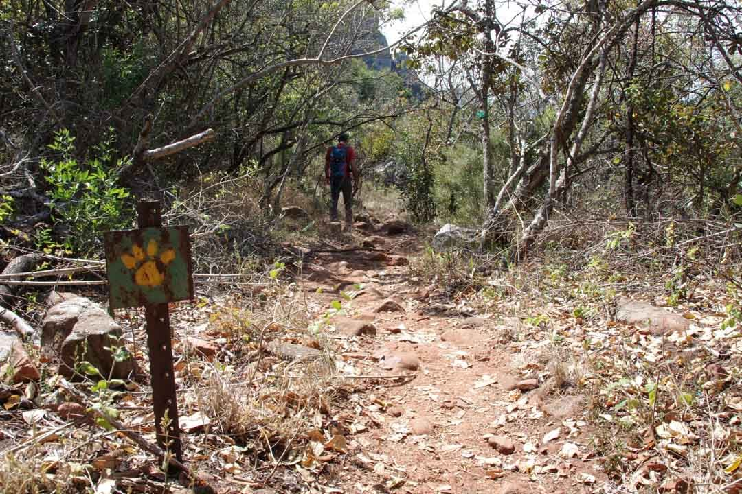 Leopard Trail - Blyde River Canyon