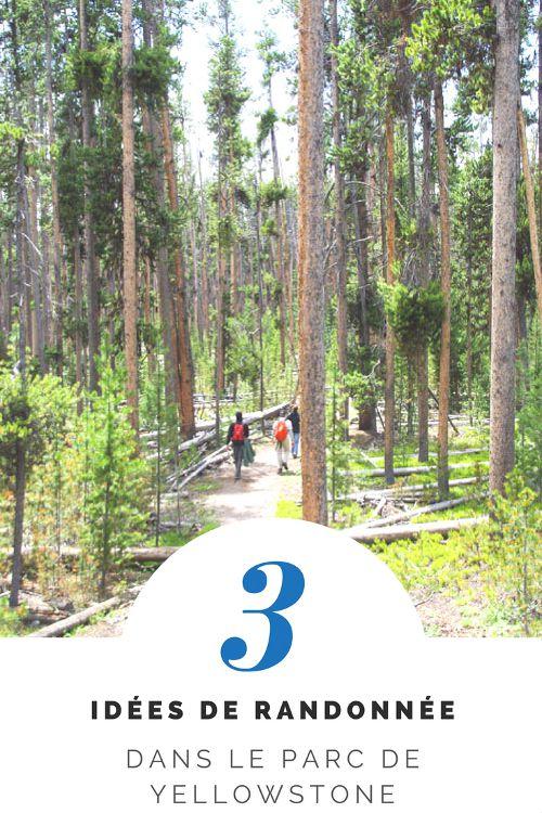 3 idées de randonnées dans le Parc NAtional de Yellowstone - Wyoming - Etats-Unis