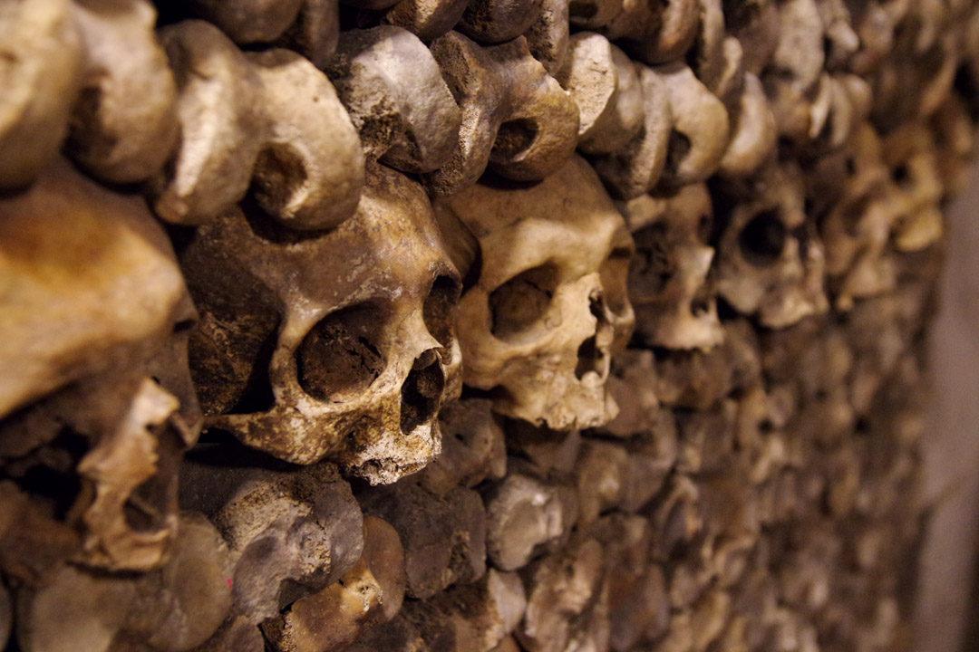 alignement de cranes dans l'ossuaire des catacombes de Paris