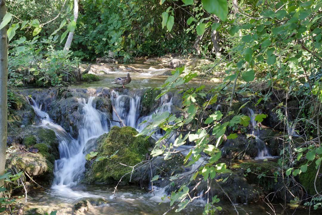 petite cascade - Parc national de Krka en Croatie