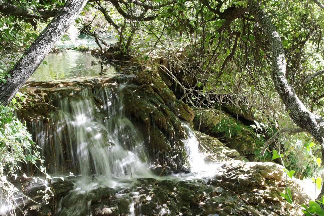 Cascade et végétation - Parc national de Krka en Croatie