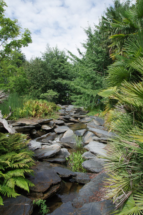 Espace Aux Origines de la Vie - Terra Botanica - Angers