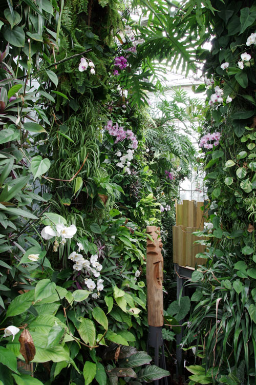 Serre des Orchidées - Terra Botanica