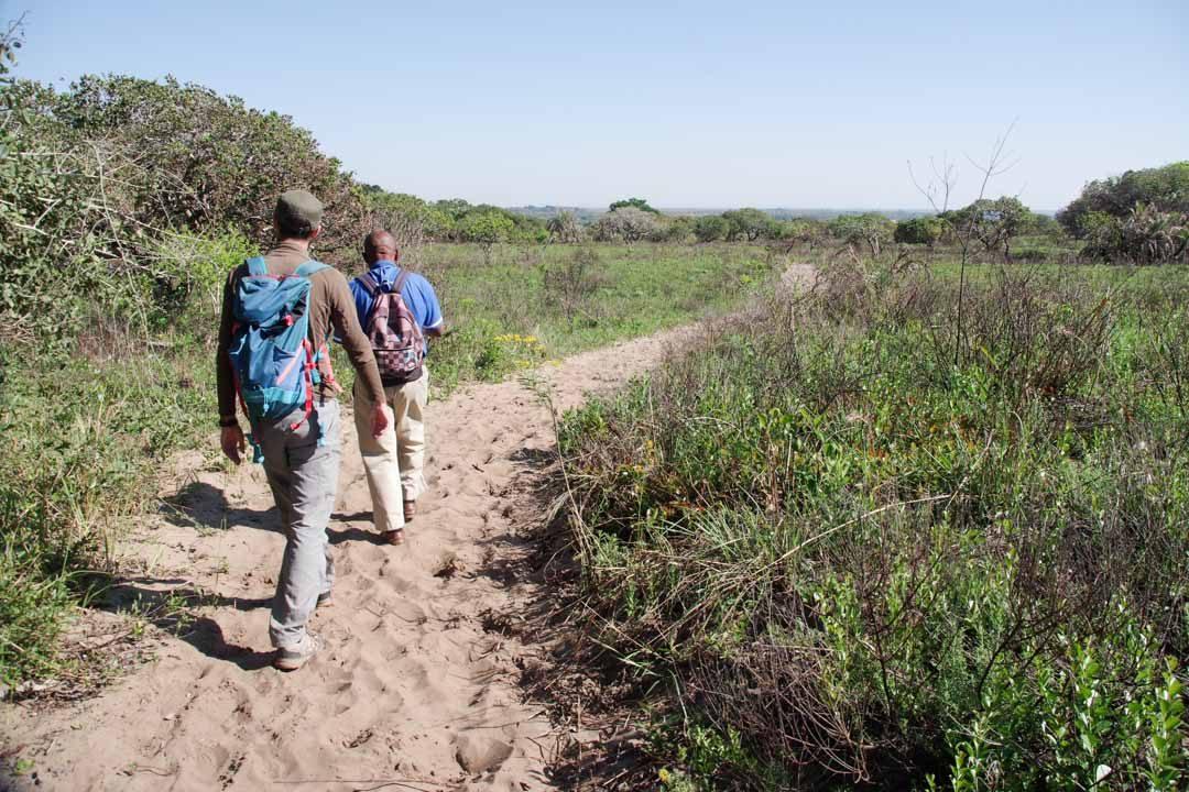 Randonnée dans la réserve d'iSimangaliso