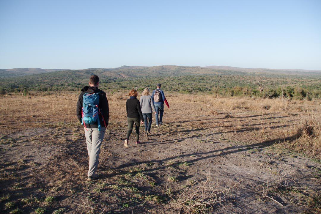 Morning Walk Safari dans le parc de Hluhluwe