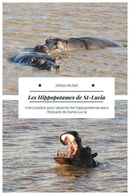 Croisière pour observer les hippopotames dans l'estuaire de Santa Lucia