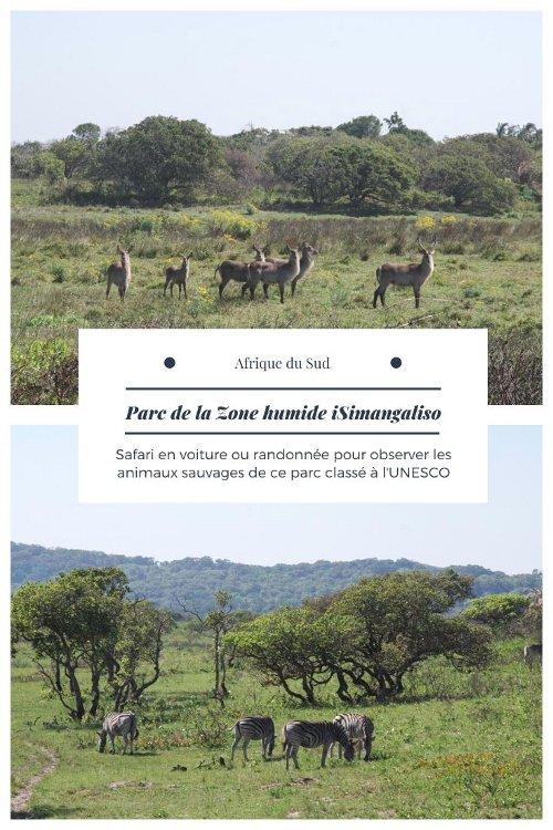 Visiter le Parc de la Zone Humide de iSimangaliso - Afrique du Sud
