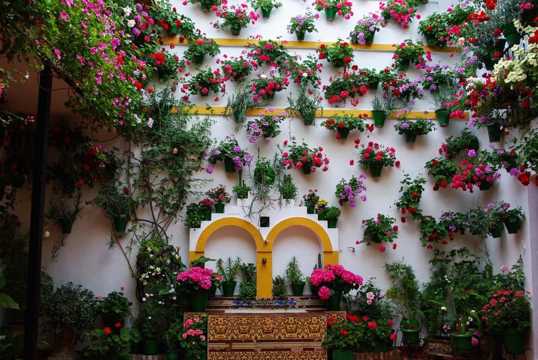 Fete des patios fleuris à Cordoue - Andalousie