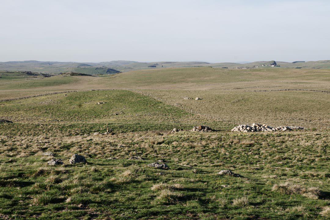 paysage du plateau de l'Aubrac