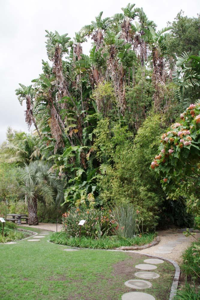 Jardin Botanique de Stellenbosch
