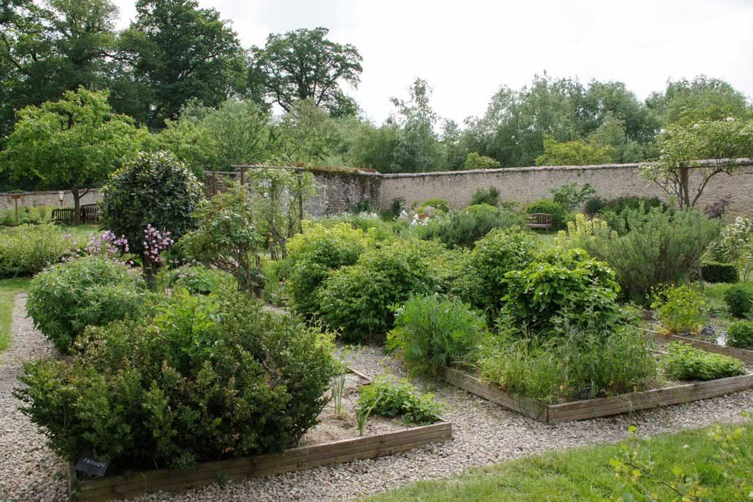 Potager et jardin médicinal des Granges de Port Royal