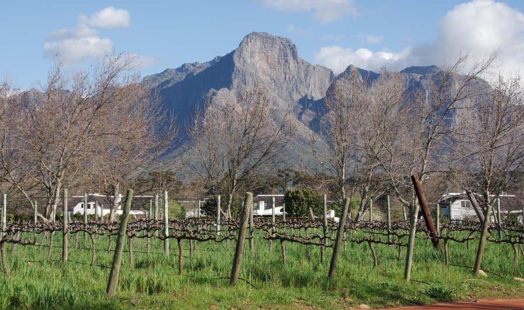 La Route des Vins d'Afrique du Sud de Stellenbosch à Franschhoek