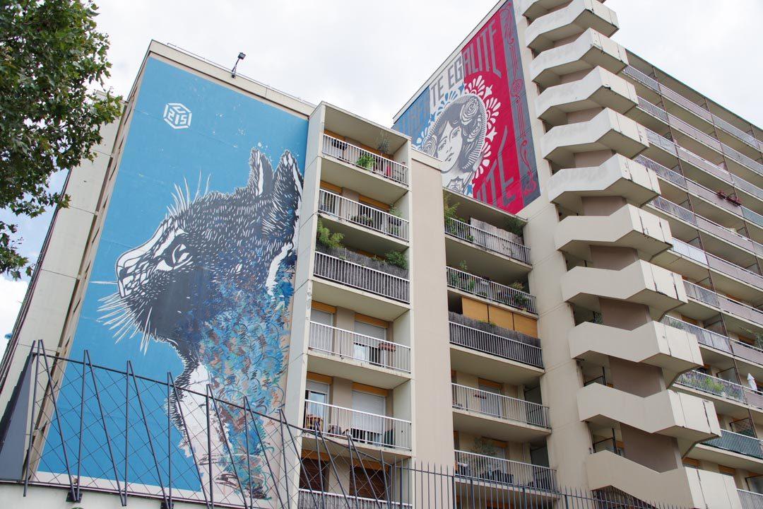 Fresques street art de C215 et Shepard Farey dans le 13eme arrondissement