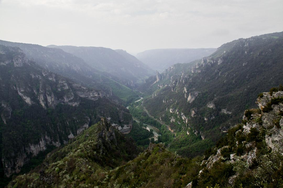 Point de vue sur les Gorges du Tarn depuis le Point Sublime