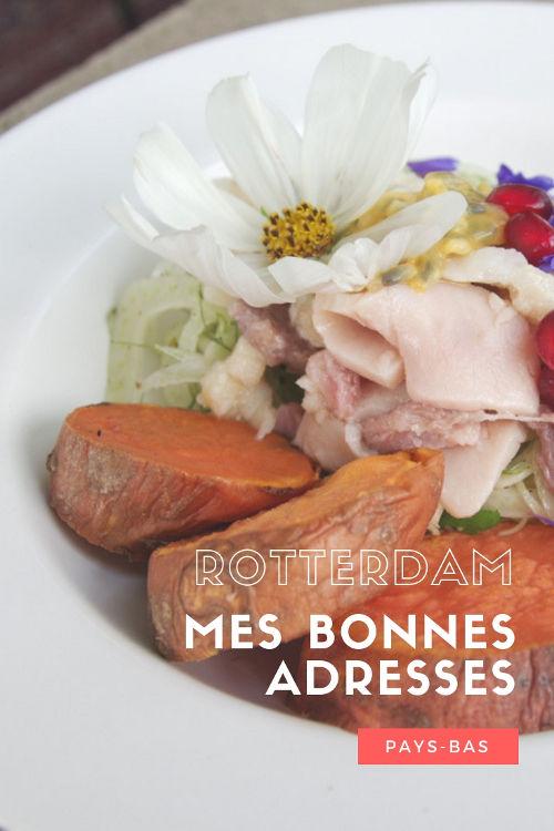 Mes bonnes adresses à Rotterdam : restaurant, shopping et hôtel