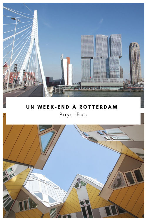 Que faire à Rotterdam en un week-end ? Le city-guide pour découvrir la ville la plus moderne des Pays-Bas