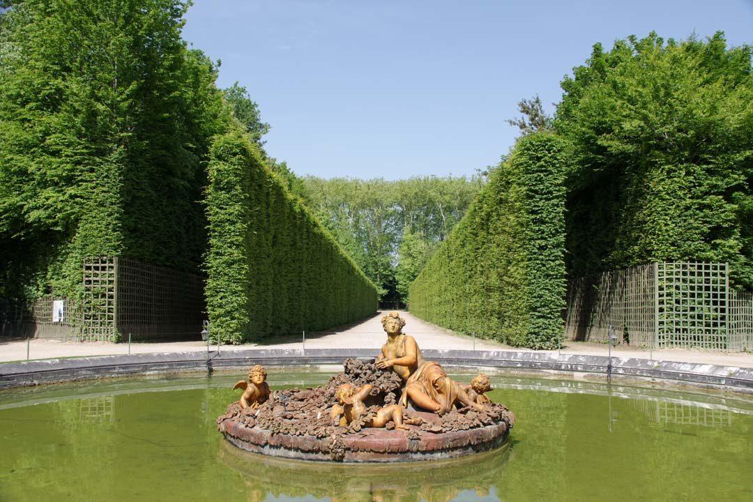 Un bosquet dans le jardin de Versailles
