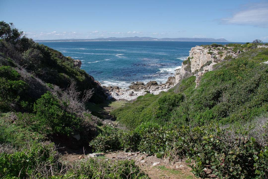 Sentier cotier - Cliff Path - Hermanus