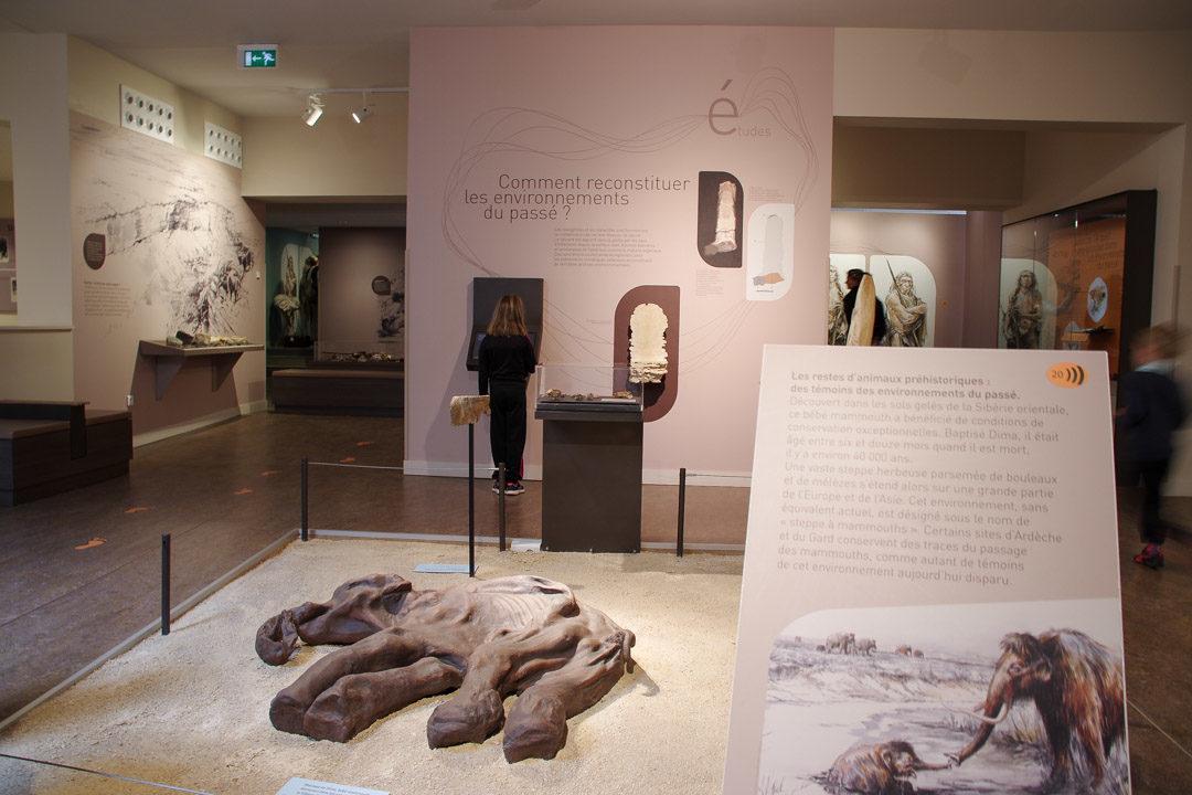 Visite de la cité de la préhistoire en Ardèche