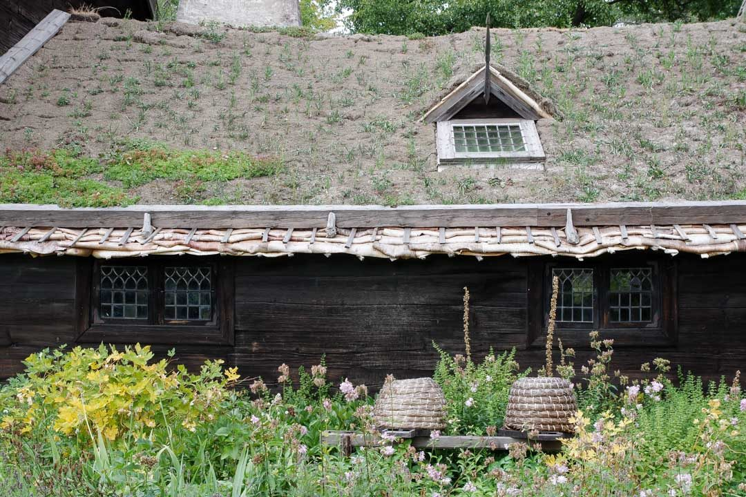 Visite du musee en plein Air Skansen