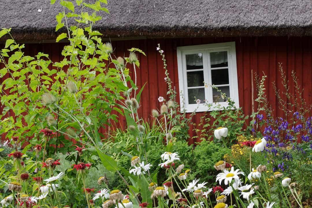 Maison suédoise fleurie - Skansen