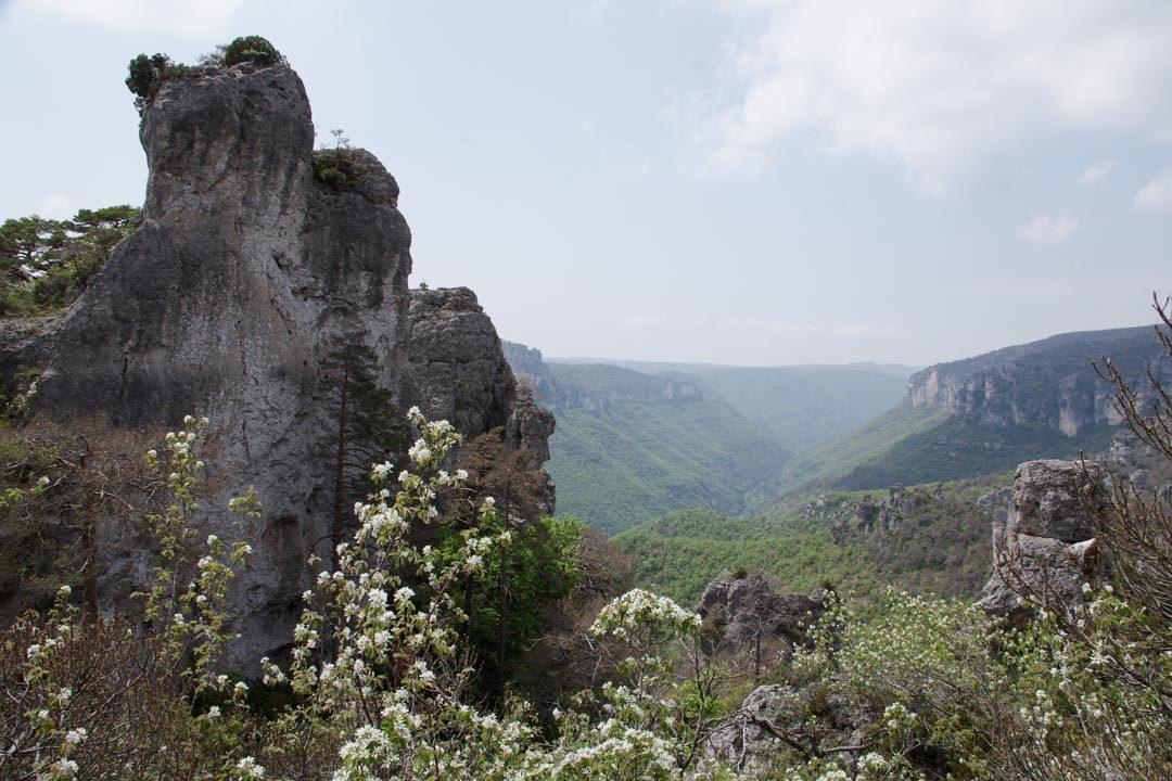 paysage autour des Gorges de la Dourbie