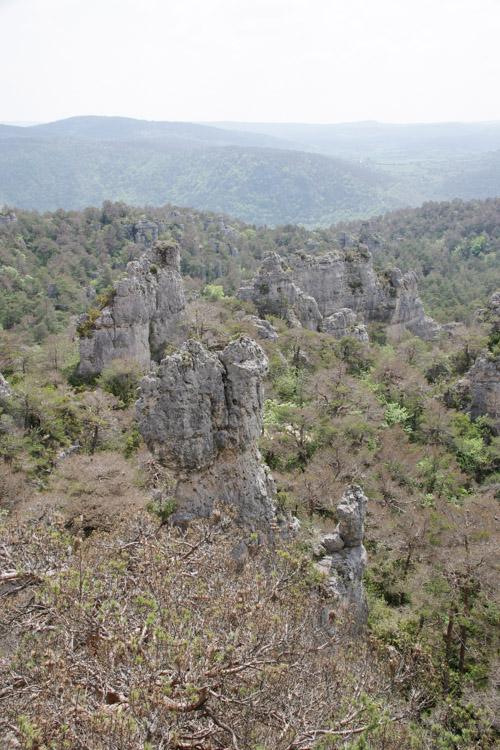 paysage rocheux de montpellier le vieux