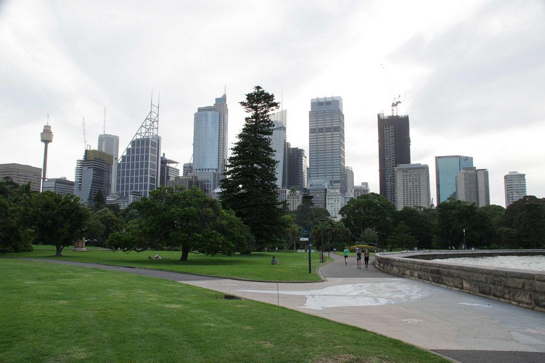 le jardin botanique de Sydney