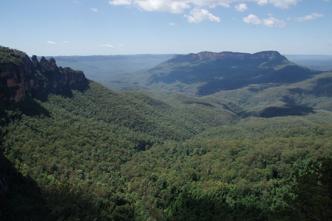 Paysage Blue Mountains