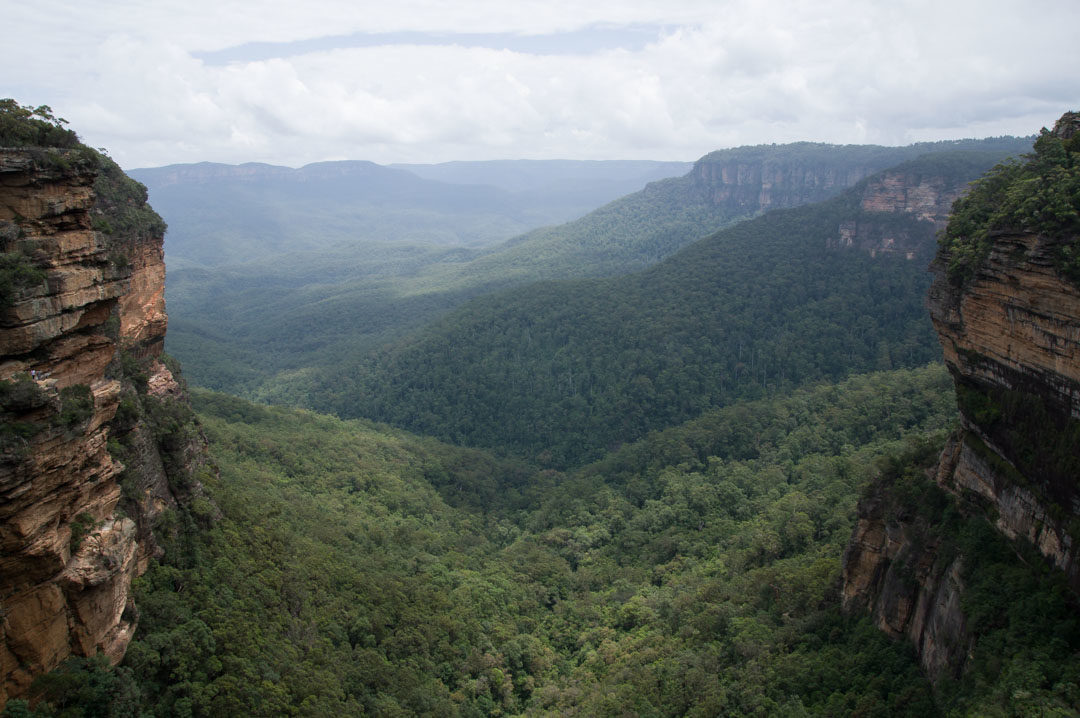 Panorama sur les Blue Mountains en Australie