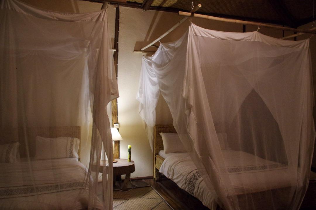 Chambre Enjojo Lodge - Queen Elizabeth