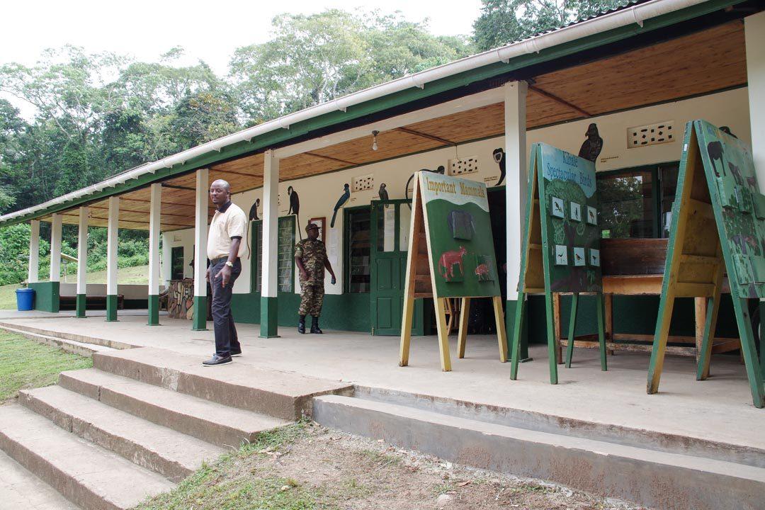 rendez-vous pour le briefing des chimpanzés dans la foret de Kibale