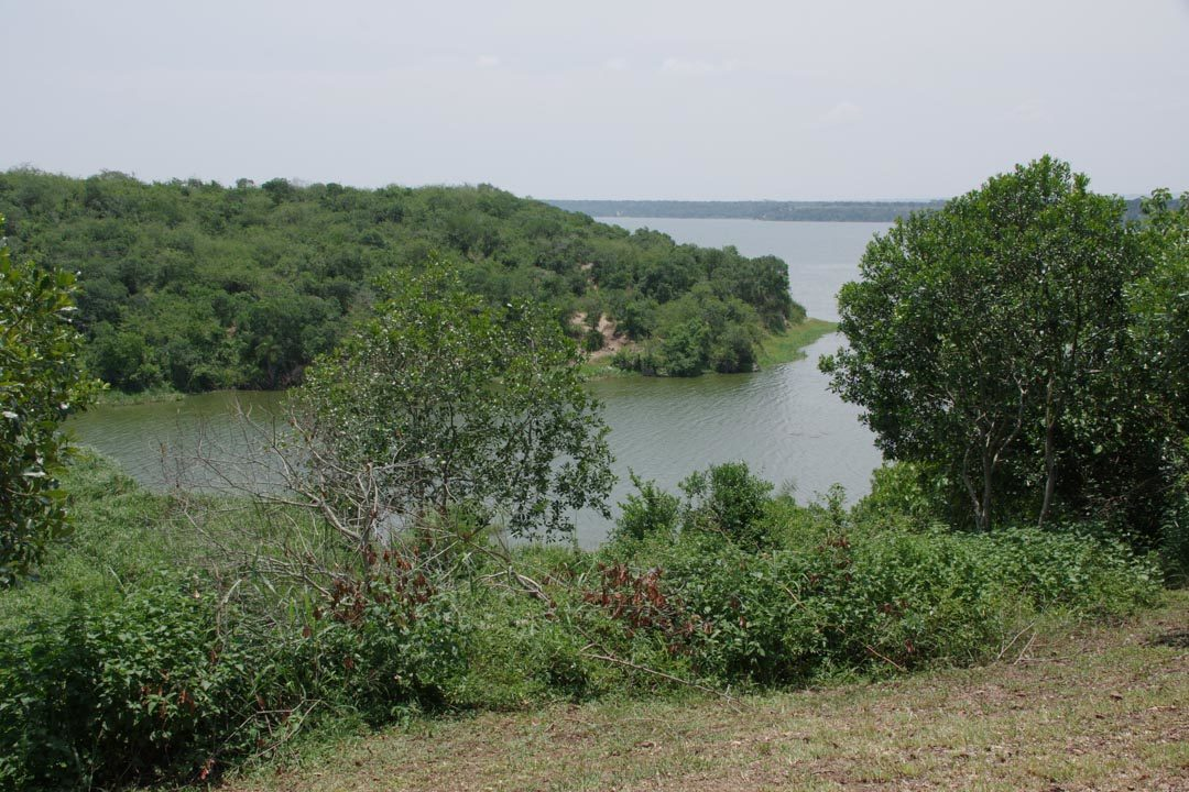 Vue sur Kazinga Channel depuis le Bush Lodge