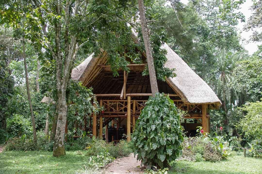 REstaurant et salle commune de Kibale Forest Camp