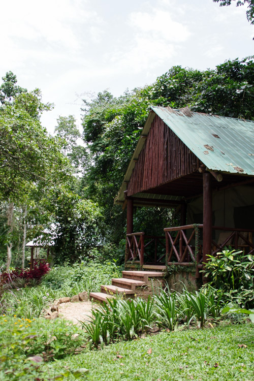 Lodge Kibale Forest Camp