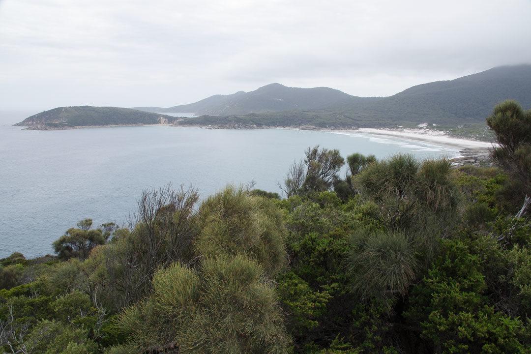 Randonnée Squeaky Beach - Wilson Promontory