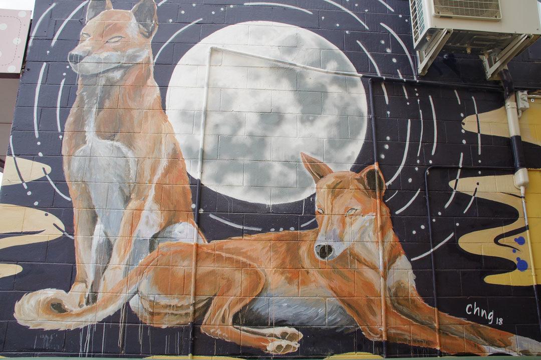 Fresque street art avec dingos - Alice Springs