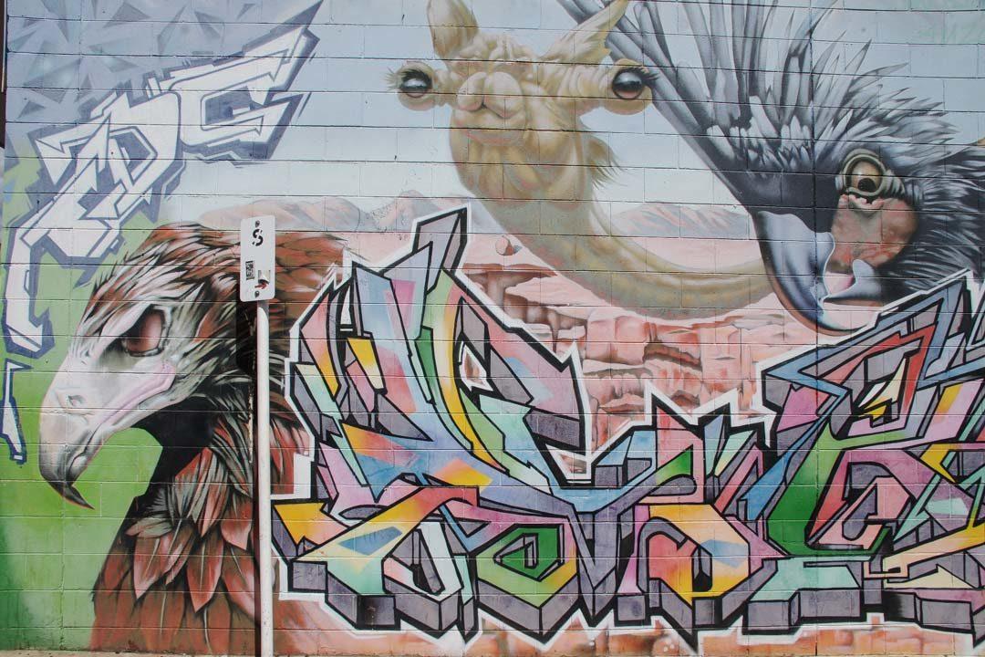 Street art - Alice Springs - Australie