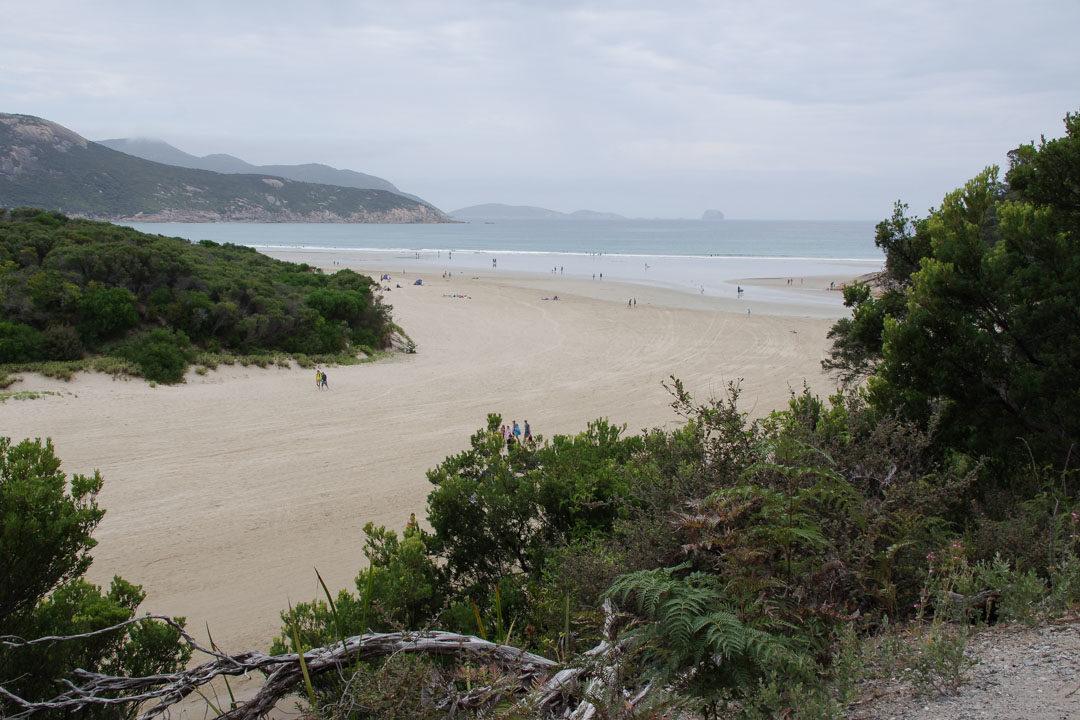 Wilson Promontory plage au niveau de Tidal River