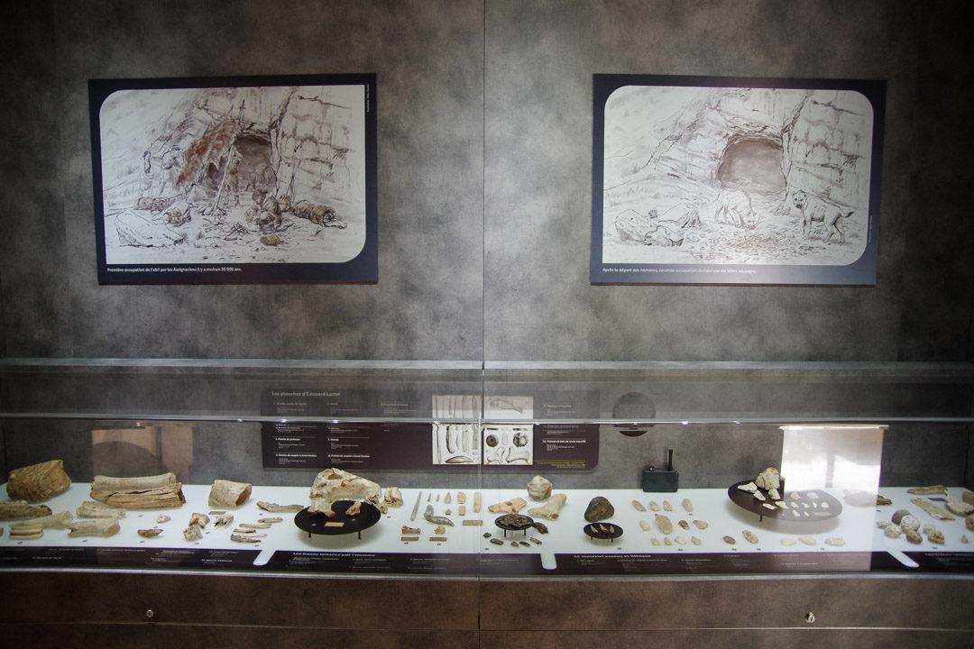 Vitrine dans le Musée de l'Aurignacien