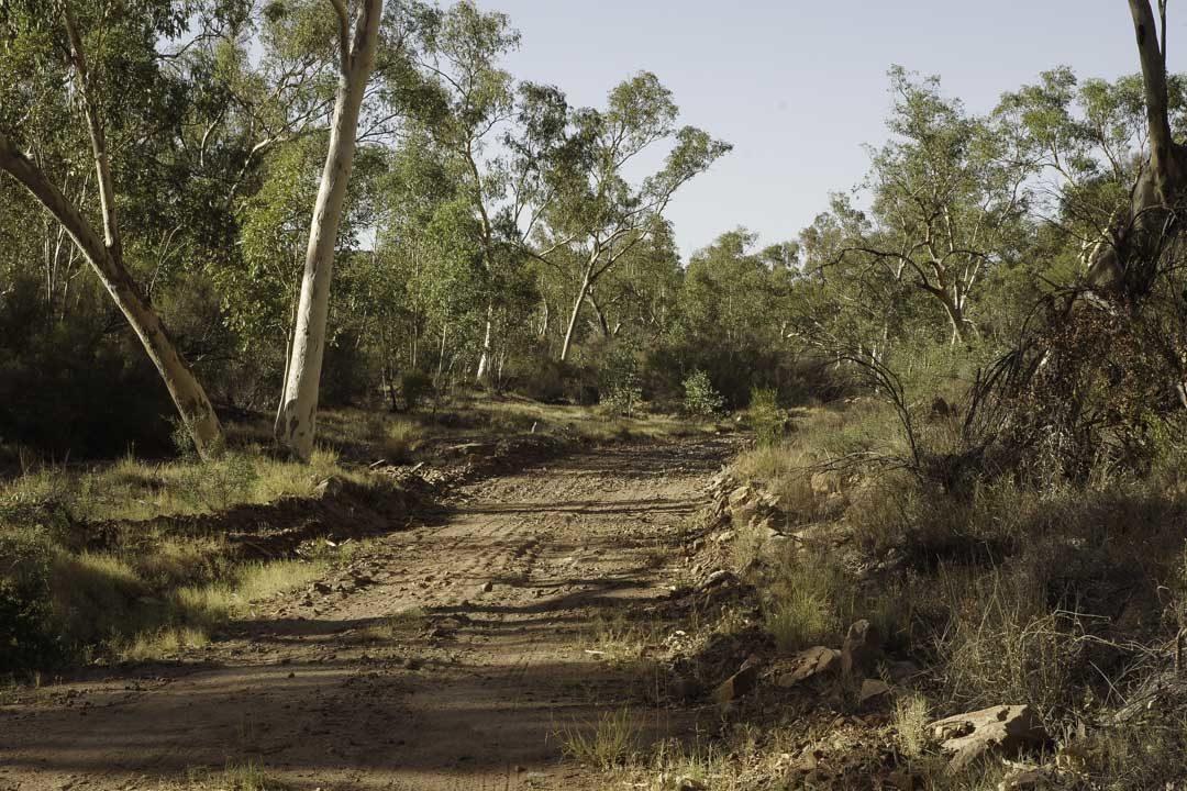 Owen Spring Natural Reserve
