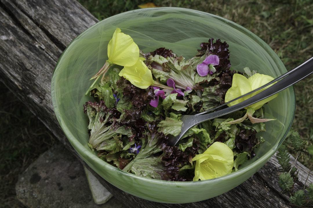 salade avec des fleurs sauvages