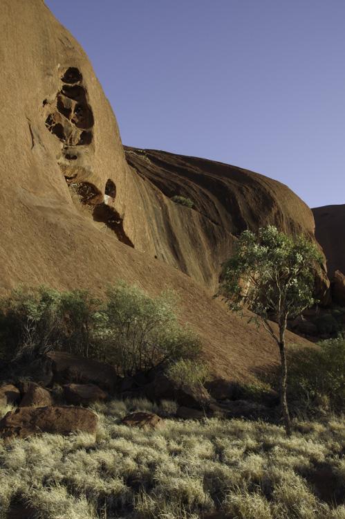 Détail du rocher Uluru