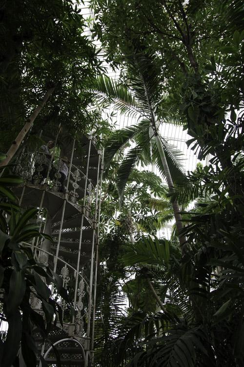 Escalier dans la Palm House de Kew Garden